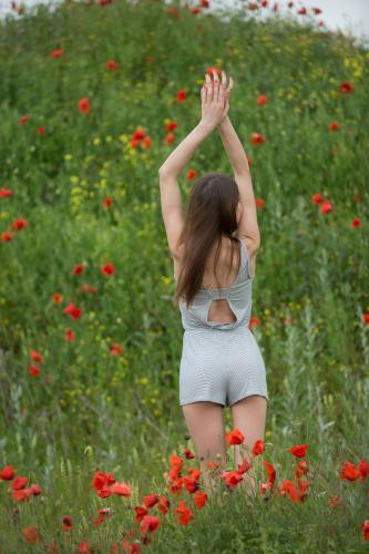 Barbara Vie Among Flowers [FotoSet]