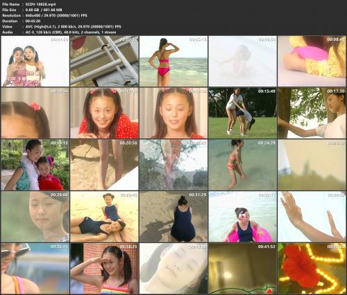 scdv-10028-mp4.jpg