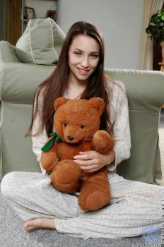 Now Viewing - Teddybear