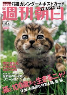 Weekly Asahi 2019-12-13 (週刊朝日 2019年12月13日号)