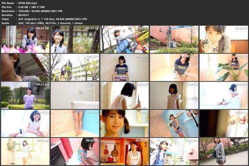 wtm-002-mp4.jpg